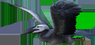 ark ichthyornis