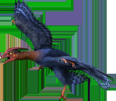 Ark microraptor